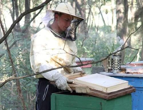 """Producenci Opowiadają: """"Na pszczelarstwie budujemy nasz świat!"""""""