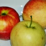 żebrrka z jabłkami (2)