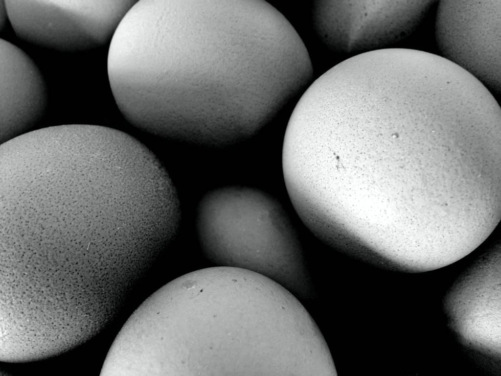 jajka tło