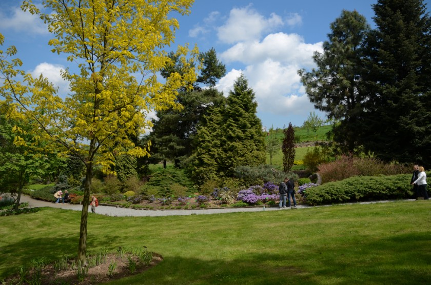 Arboretum_Strzelin-2