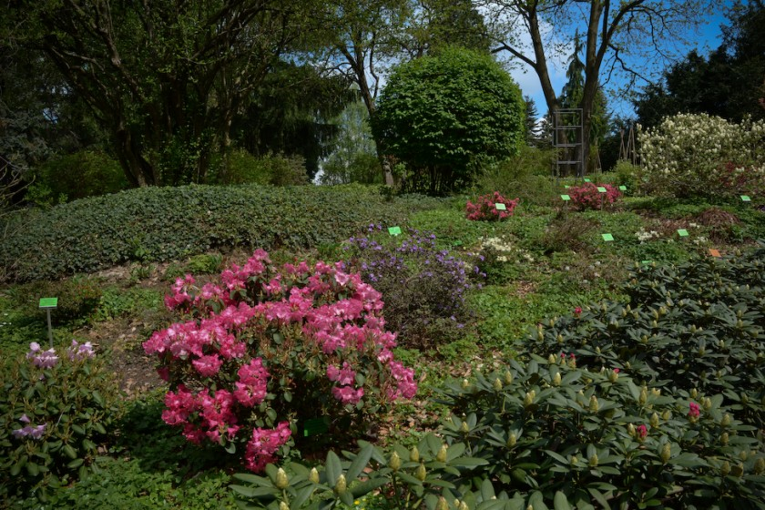 Arboretum_Strzelin-3