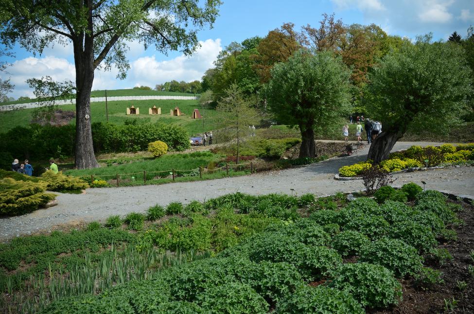 Arboretum_Strzelin