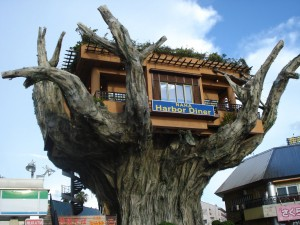 Okinawa__Tree_Restaurant_by_ikari_kun