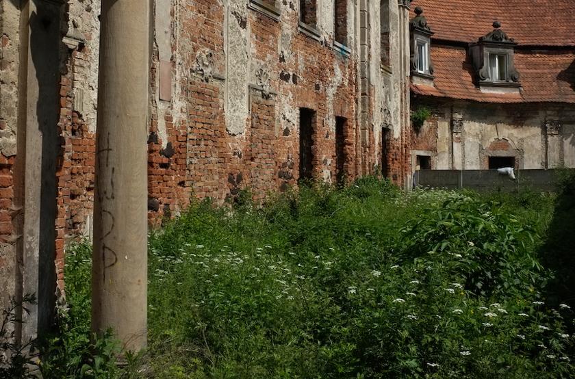 Goszcz_Pałac 2 (6 z 9)