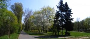 Park_im._A._Wodziczki
