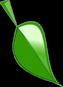 leaf-295300_640