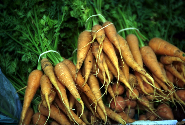 Carrots_with_stems