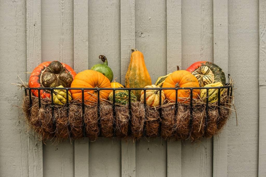 gourds-204929_1280