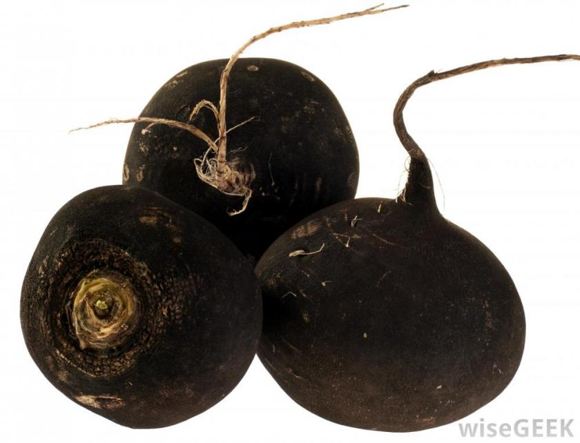 black-radish-against-white-background