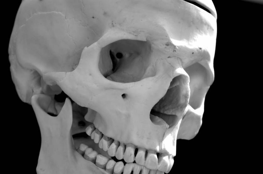 Human_skull_-_black_and_white