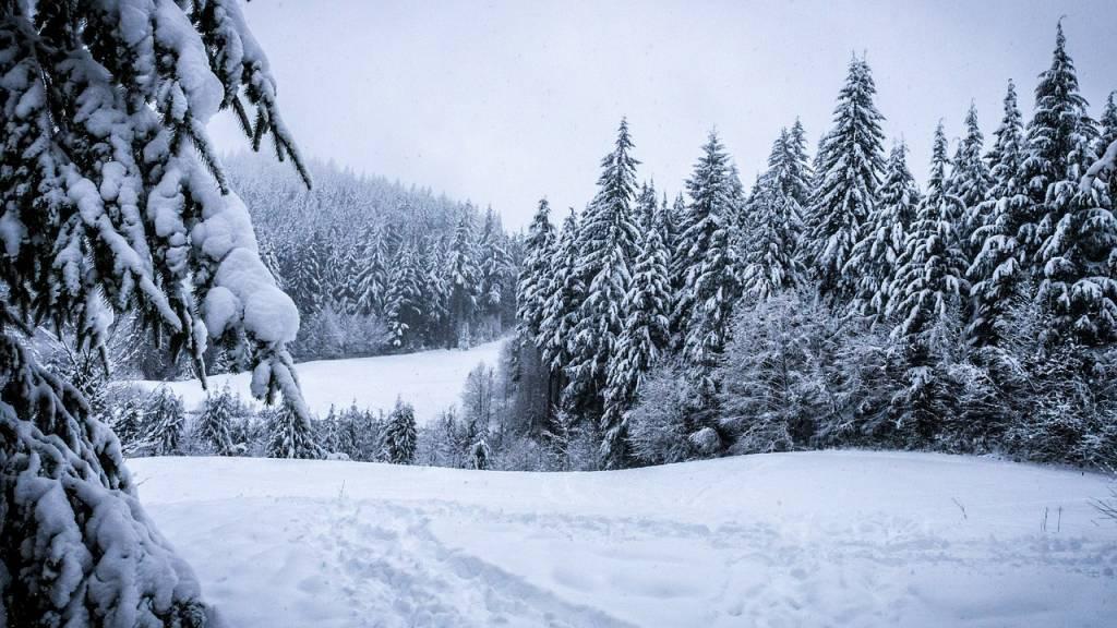 winter-273403_1280