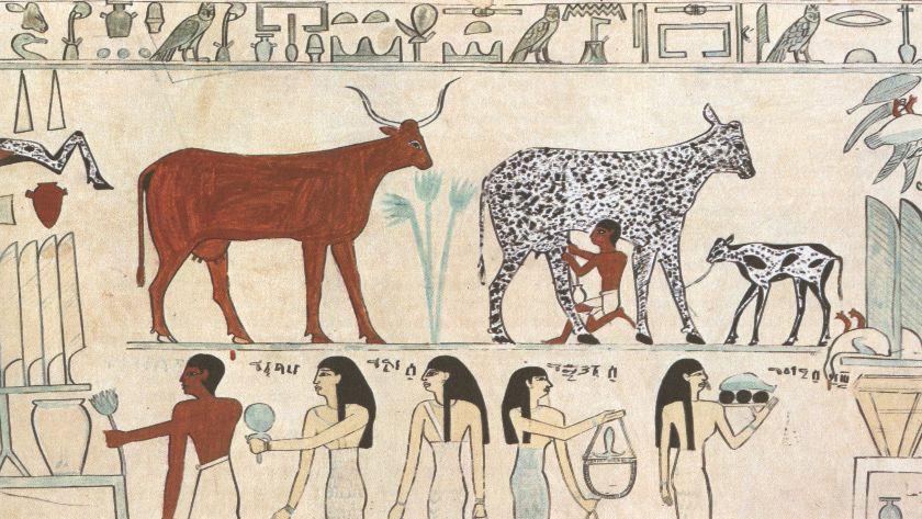 kuchnia starożytnego Egiptu