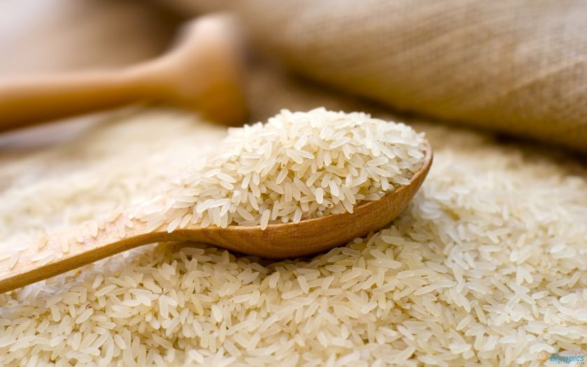 Historia ryżu