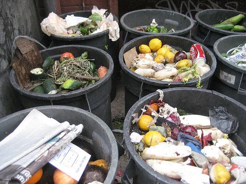 Na całym świecie marnuje się jedzenie, Źródło: sustainblog.org