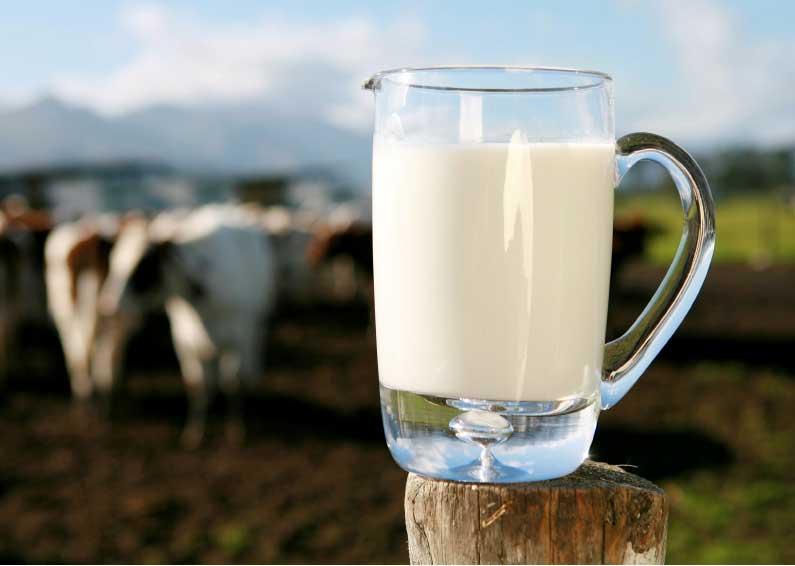 Mleko i jego rodzaje