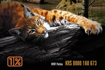 wwf_tylko_krs_10653