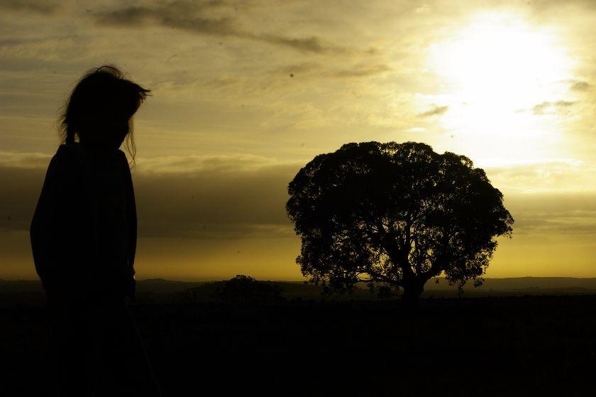 dziewczynka drzewo jawia