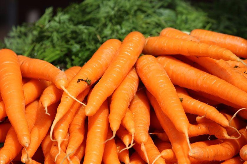 Piękne i umyte marchewki
