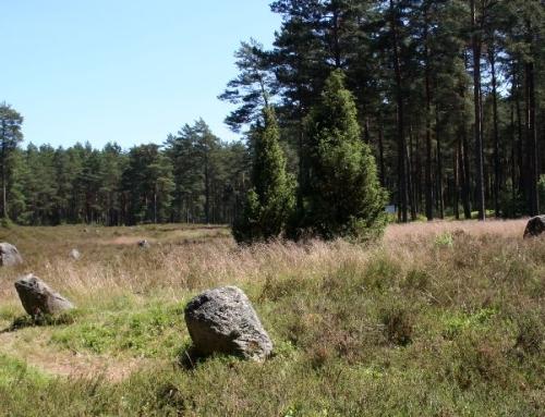 Kamienne kręgi w Odrach – Polskie Stonehenge