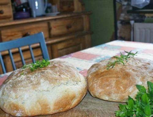Warsztaty serowarskie czy chlebowe, dlaczego warto na nie jeździć?