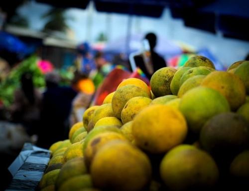 Żywność eko coraz bardziej doceniana
